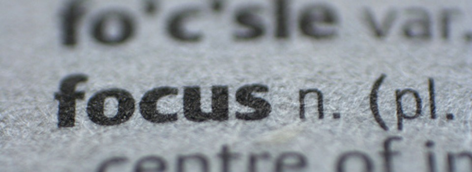 Word focus in dictionary